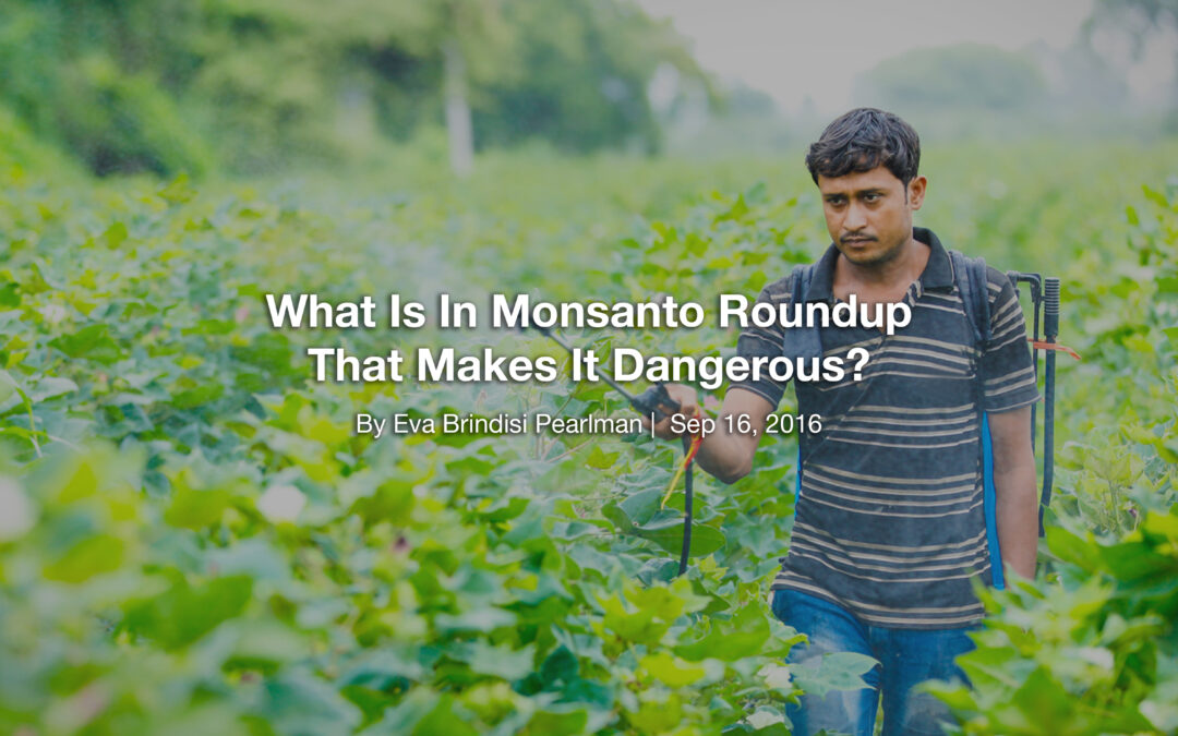 What Is In Monsanto Roundup That Makes It Dangerous?