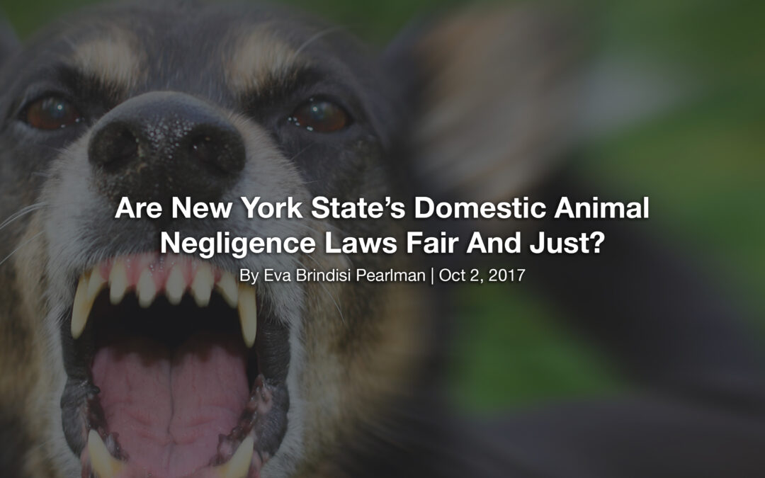 Are New York State's Domestic Animal Negligence Laws Fair And Just?