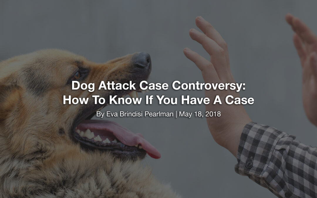 Dog Attack Case Controversy: How To Know If You Have A Case